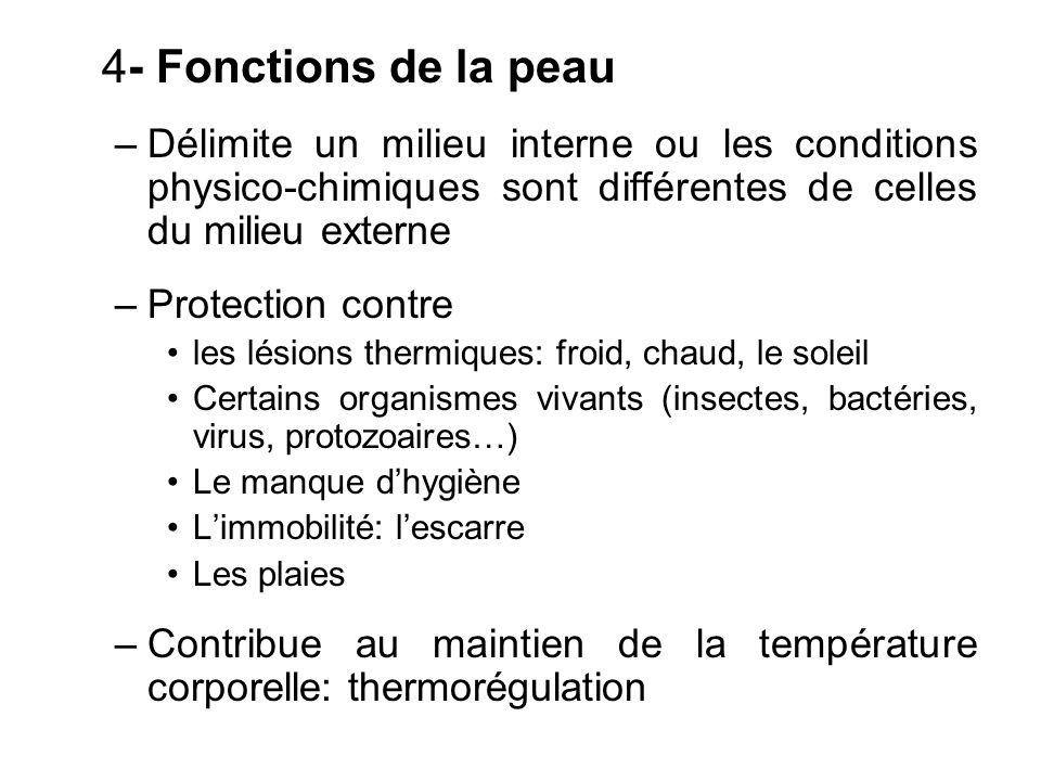 4- Fonctions de la peau Délimite un milieu interne ou les conditions physico-chimiques sont différentes de celles du milieu externe.
