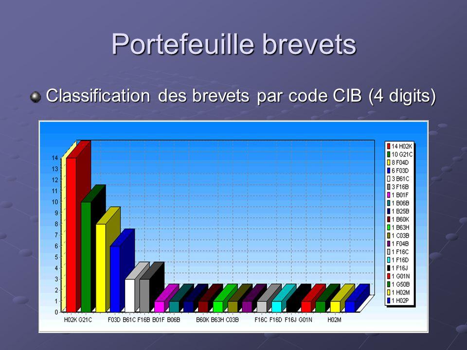 Portefeuille brevets Classification des brevets par code CIB (4 digits)