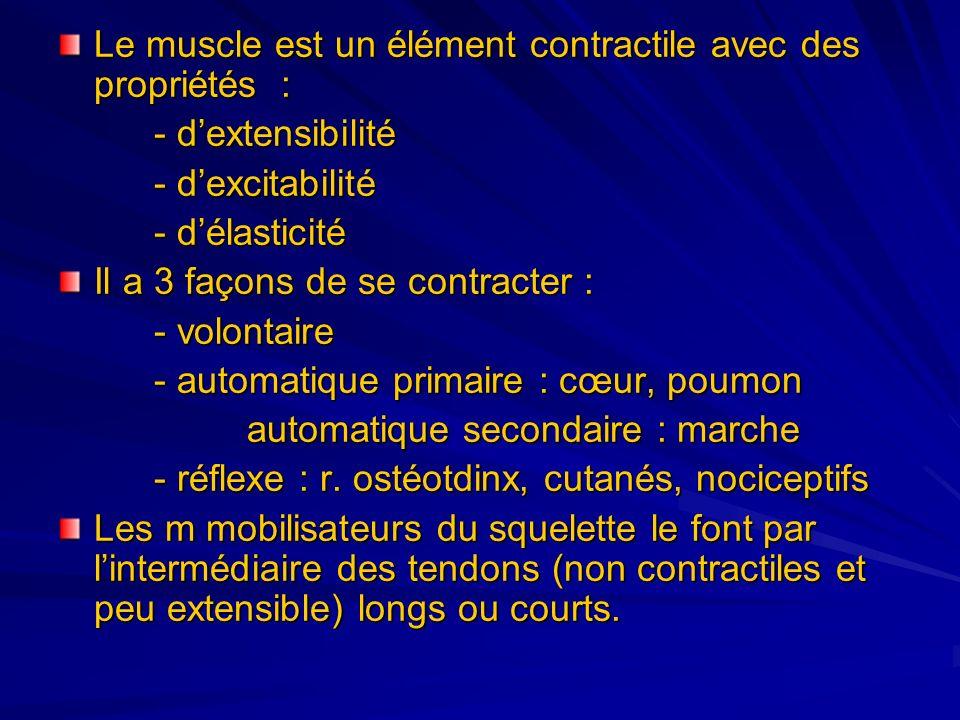 Le muscle est un élément contractile avec des propriétés :