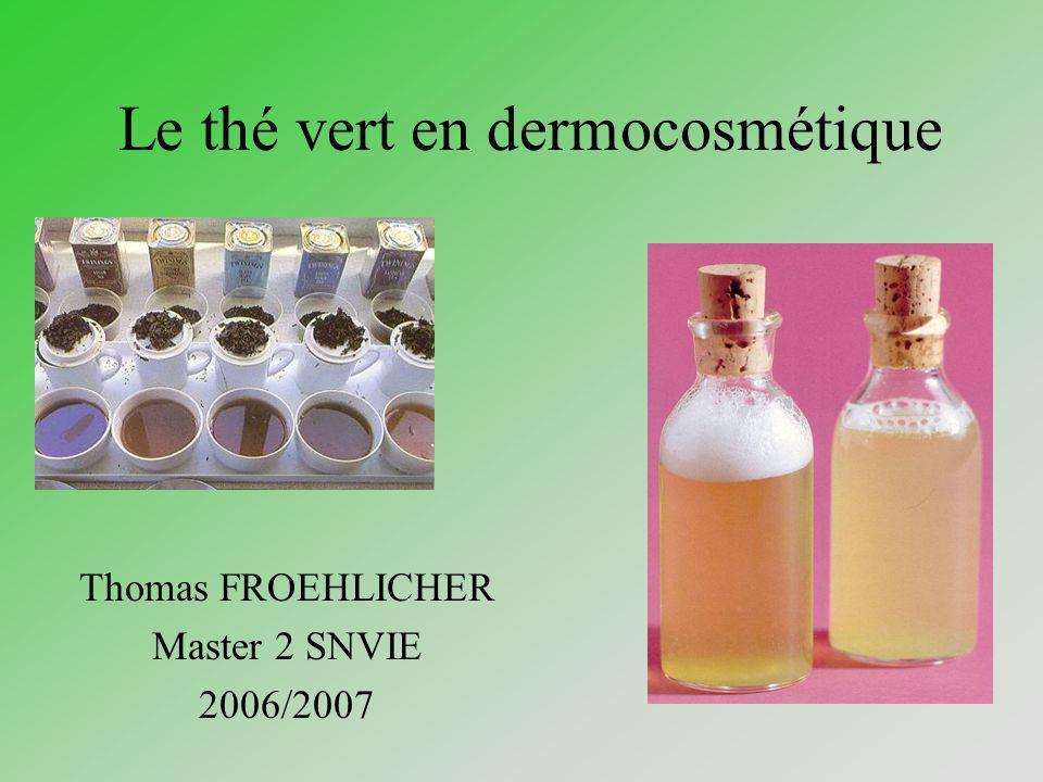 Le thé vert en dermocosmétique