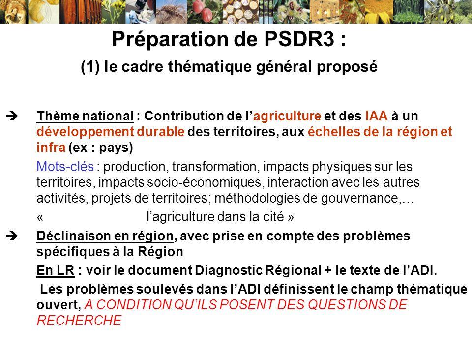 Préparation de PSDR3 : (1) le cadre thématique général proposé