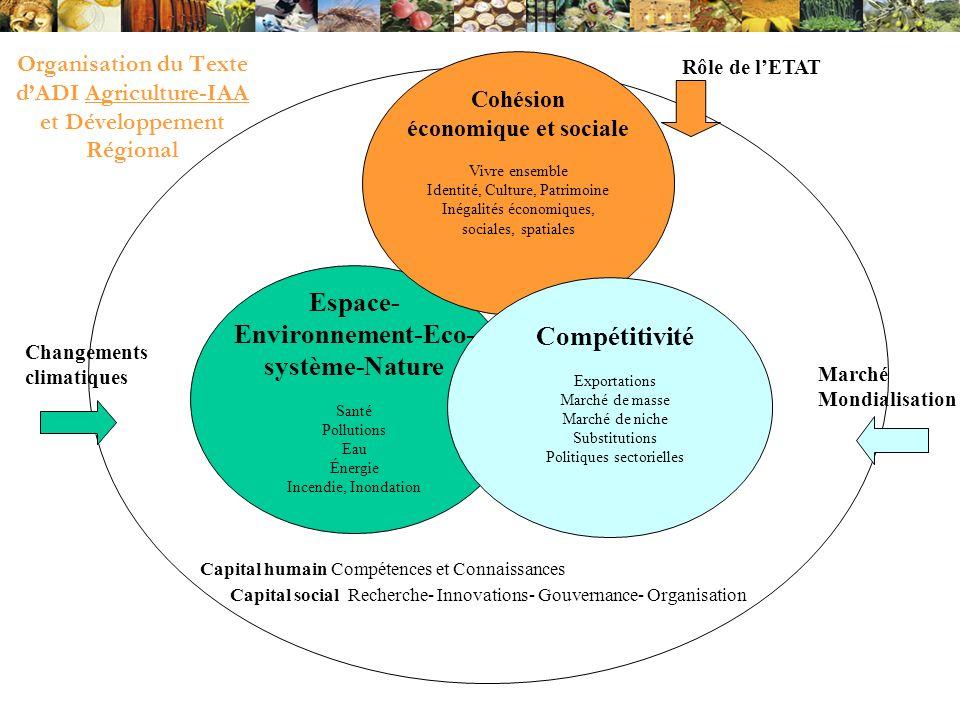 Organisation du Texte d'ADI Agriculture-IAA et Développement Régional