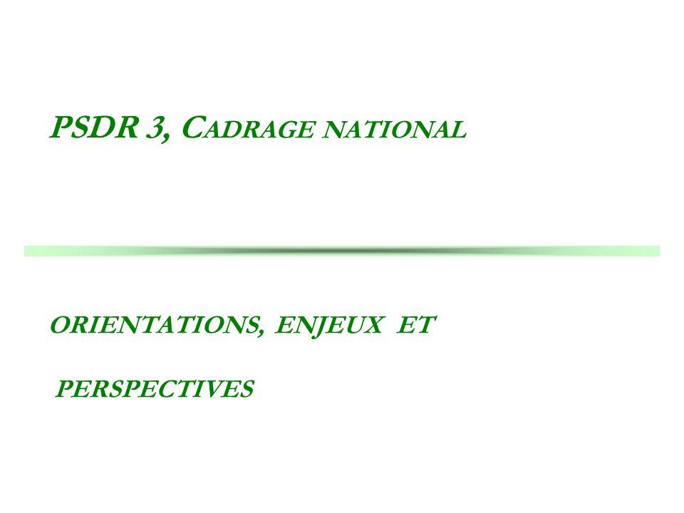 PSDR 3, CADRAGE NATIONAL ORIENTATIONS, ENJEUX ET PERSPECTIVES