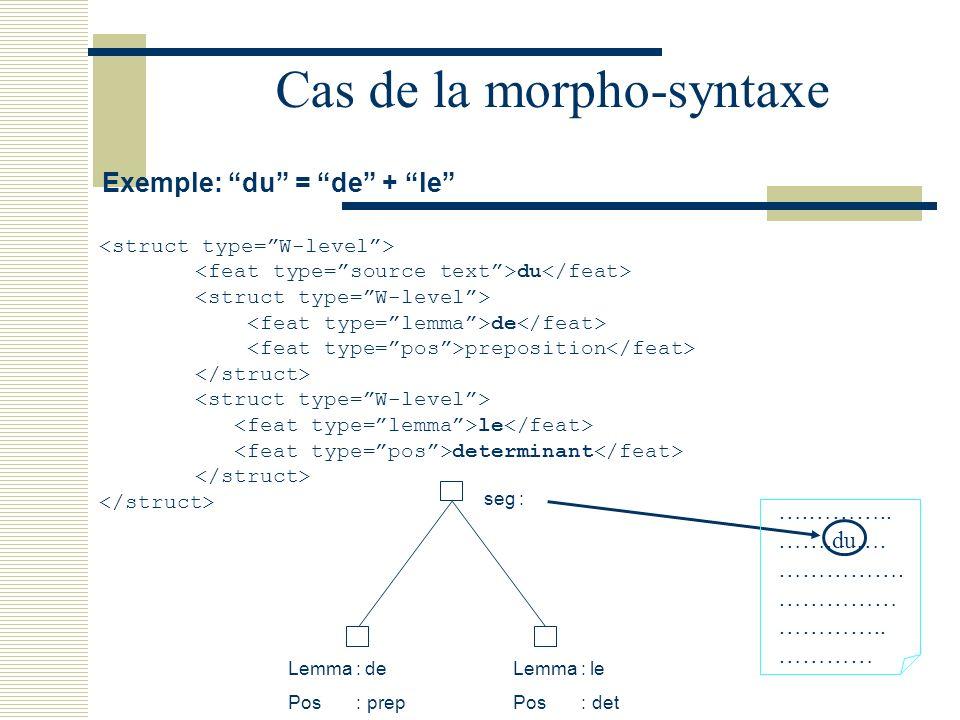 Cas de la morpho-syntaxe