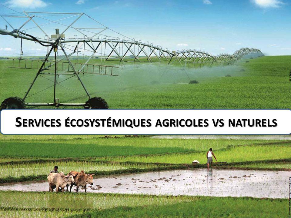 Services écosystémiques agricoles vs naturels