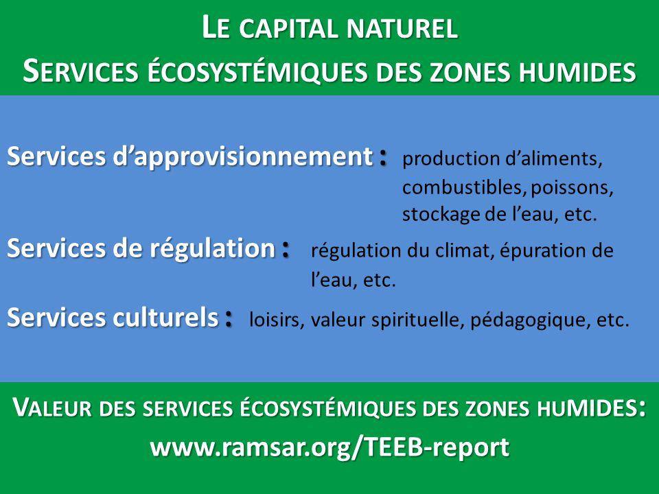 Le capital naturel Services écosystémiques des zones humides