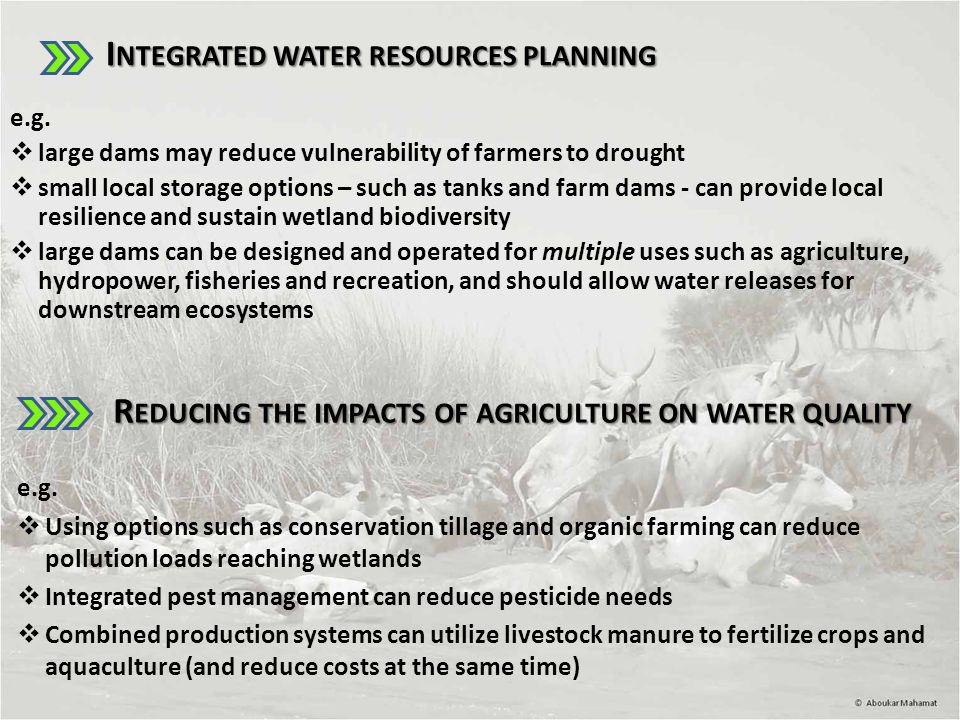 Integrated water resources planning e.g.