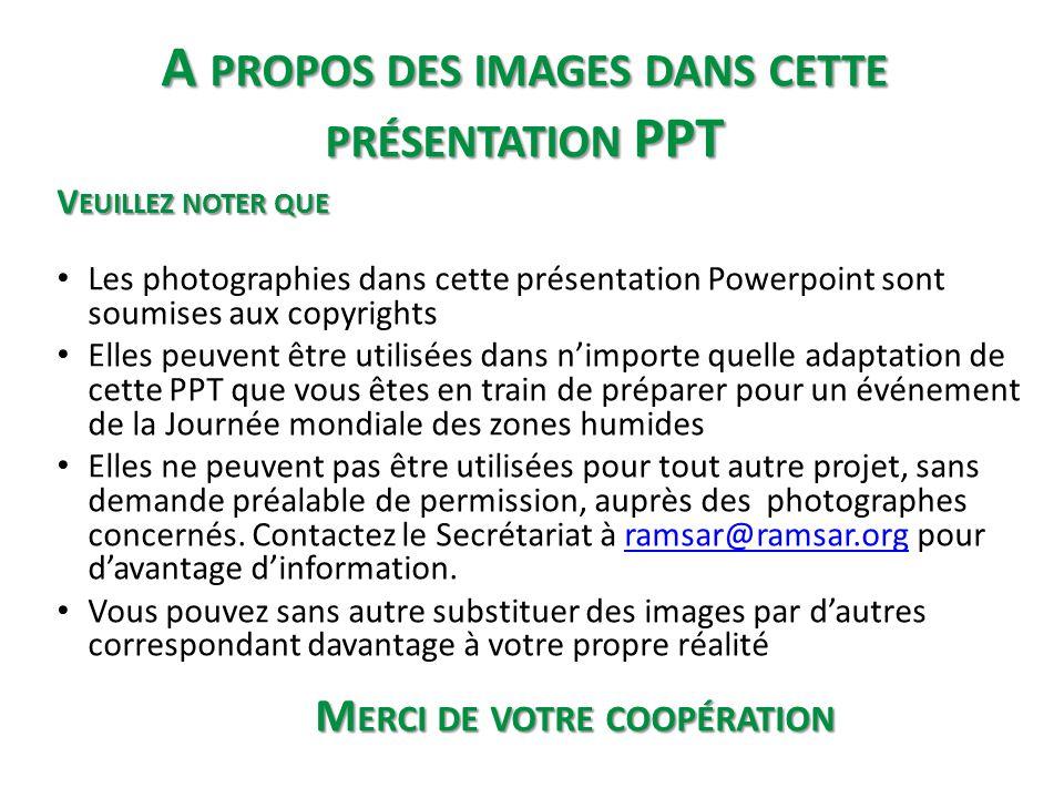 A propos des images dans cette présentation PPT