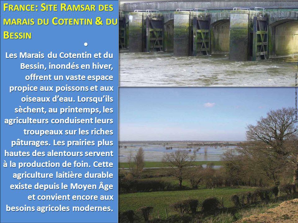France: Site Ramsar des marais du Cotentin & du Bessin