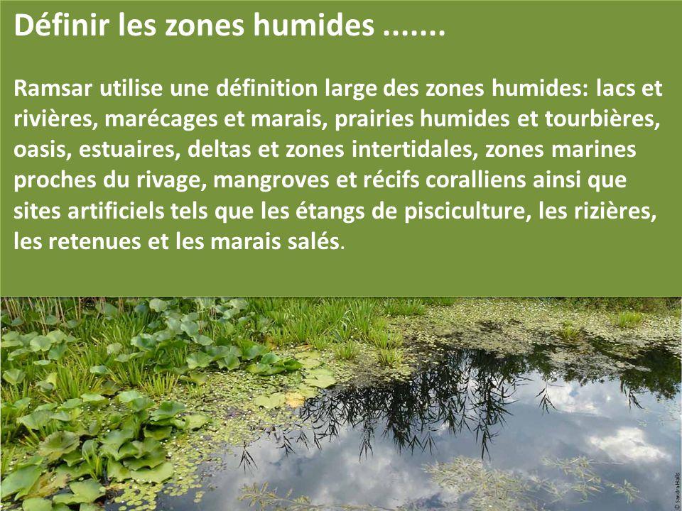 Définir les zones humides .......