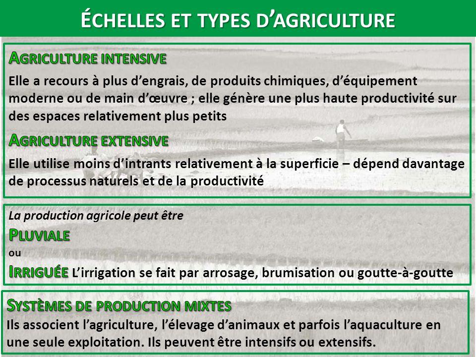 échelles et types d'agriculture