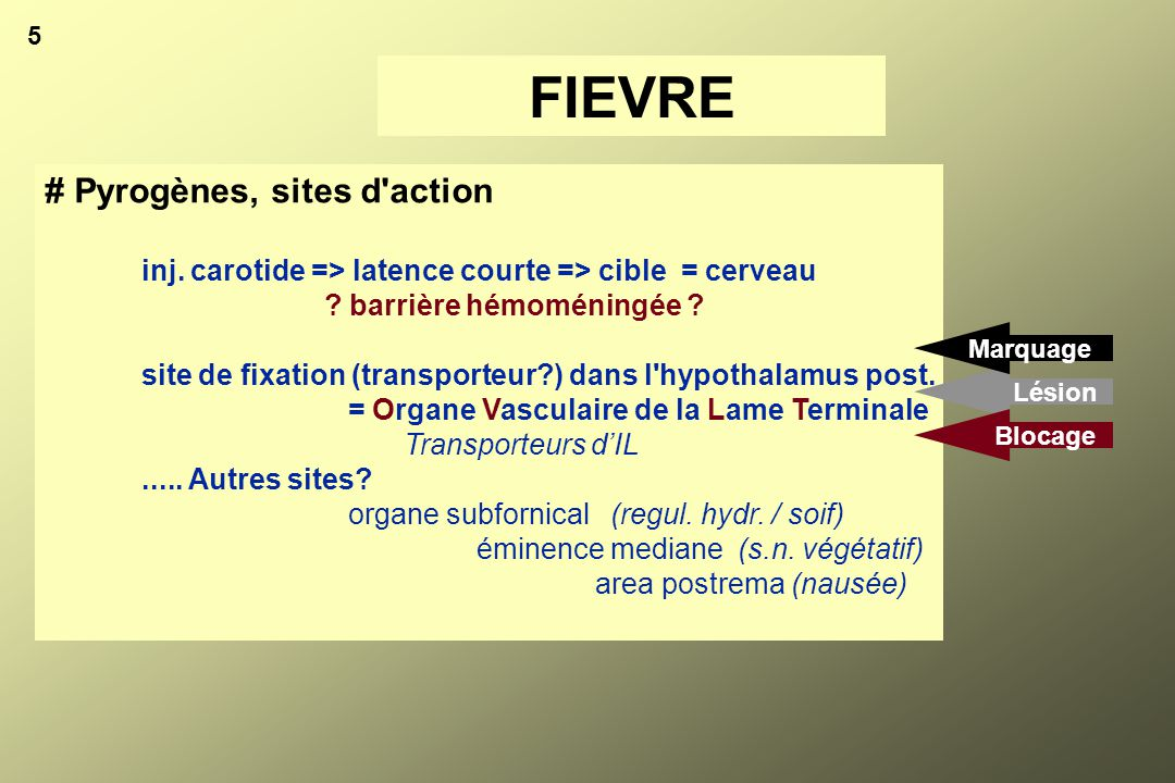 FIEVRE # Pyrogènes, sites d action