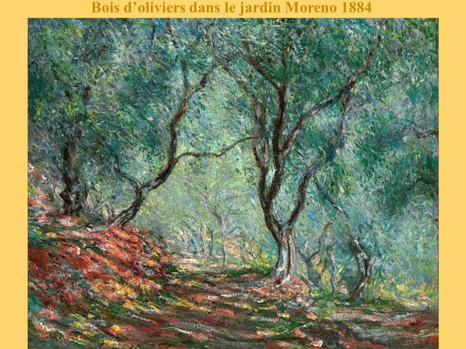 Bois d'oliviers dans le jardin Moreno 1884