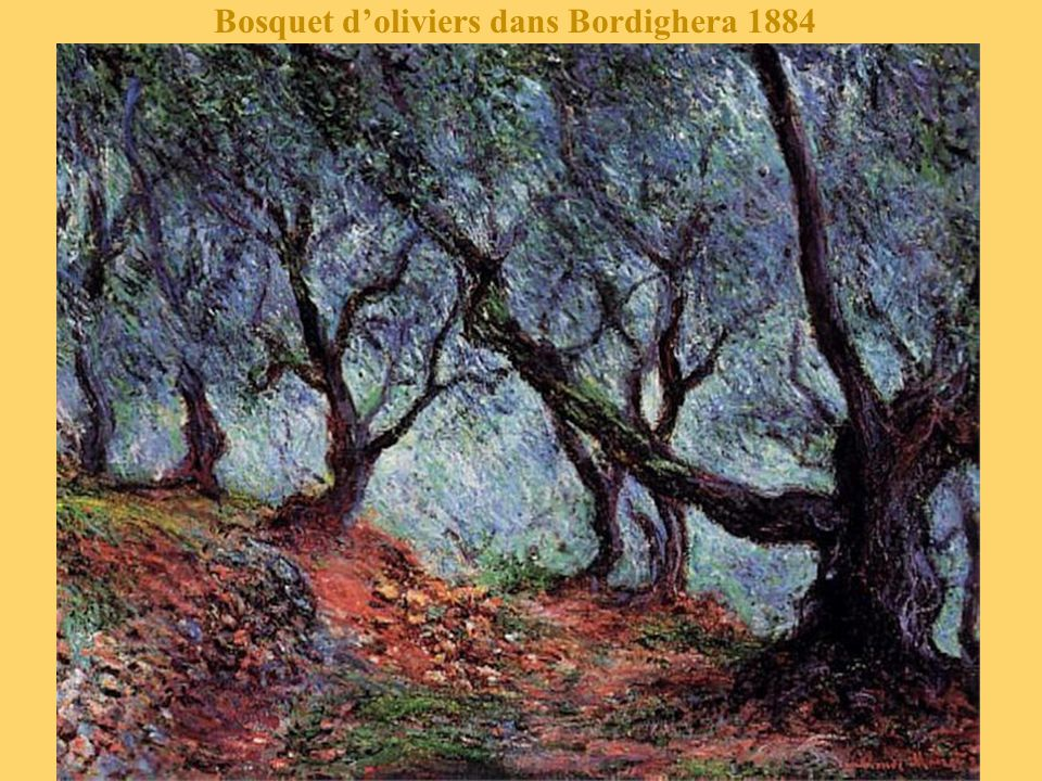 Bosquet d'oliviers dans Bordighera 1884