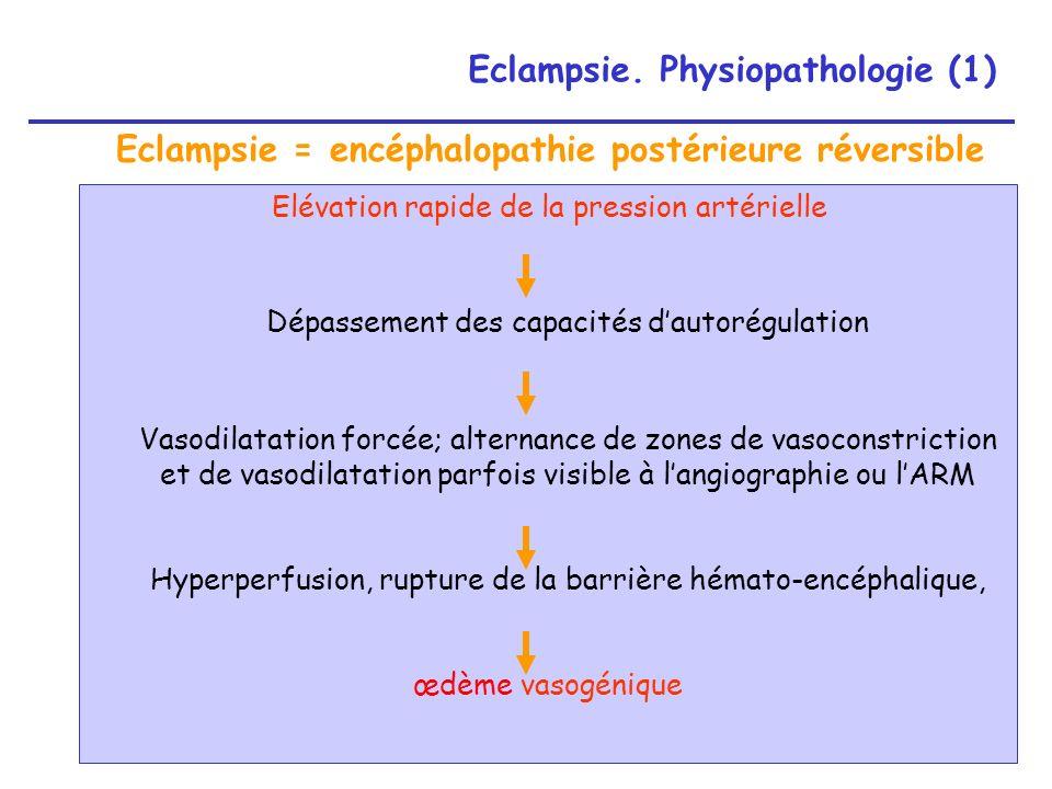 Eclampsie. Physiopathologie (1)