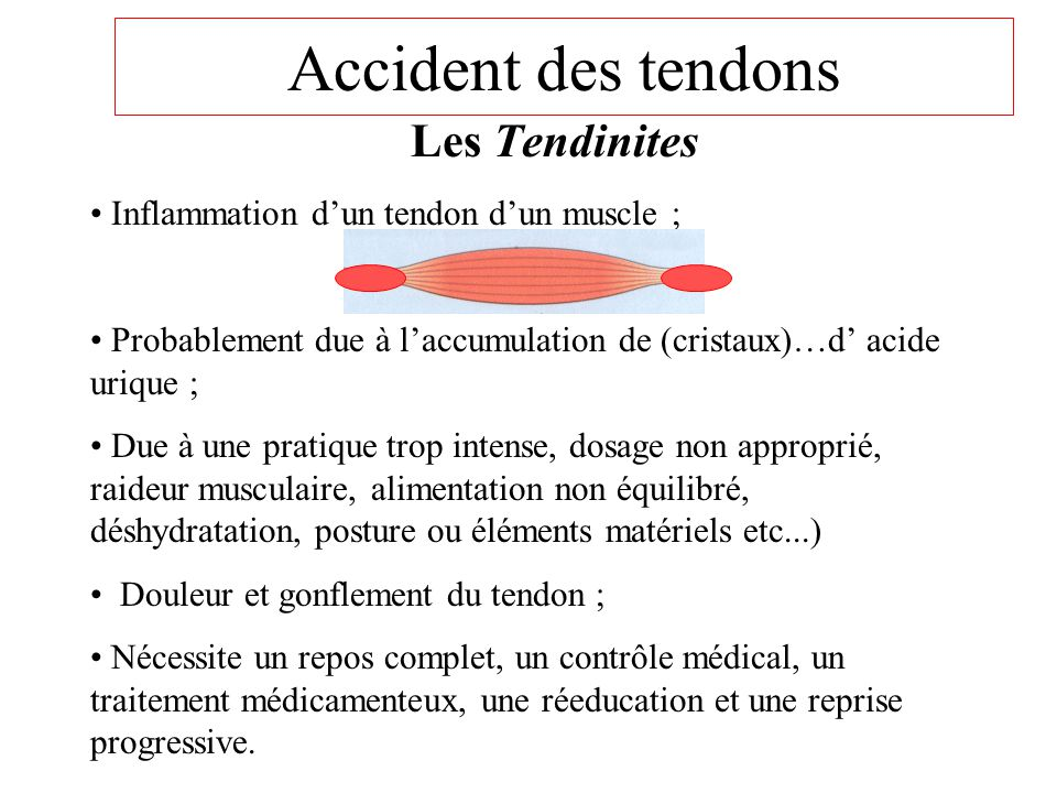 Accident des tendons Les Tendinites
