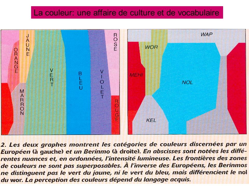La couleur: une affaire de culture et de vocabulaire