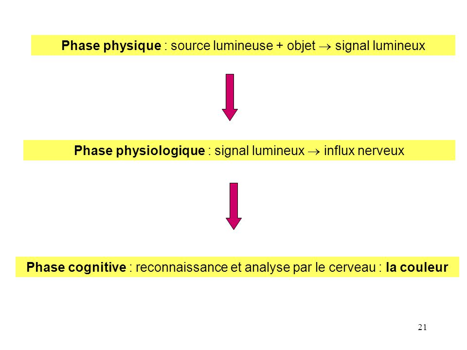 Phase physique : source lumineuse + objet  signal lumineux