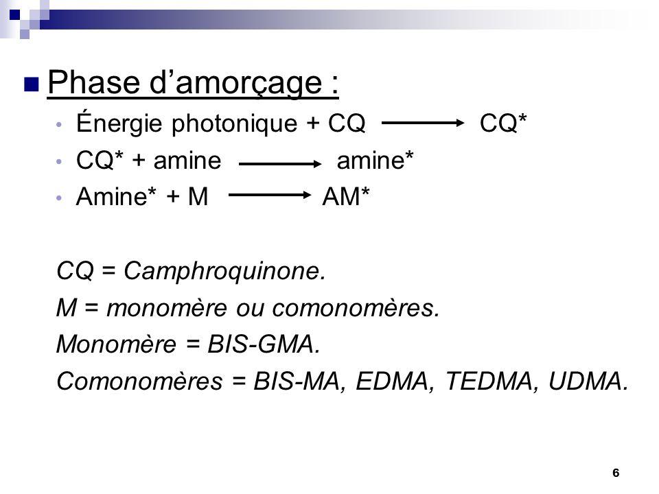 Phase d'amorçage : Énergie photonique + CQ CQ* CQ* + amine amine*