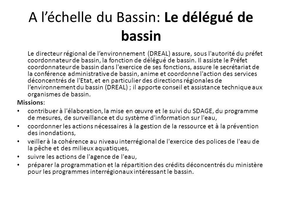 A l'échelle du Bassin: Le délégué de bassin