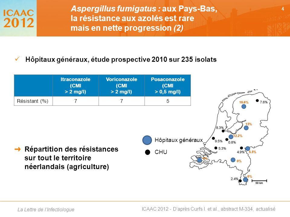Aspergillus fumigatus : aux Pays-Bas, la résistance aux azolés est rare mais en nette progression (2)