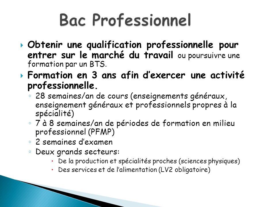 Bac Professionnel Obtenir une qualification professionnelle pour entrer sur le marché du travail ou poursuivre une formation par un BTS.