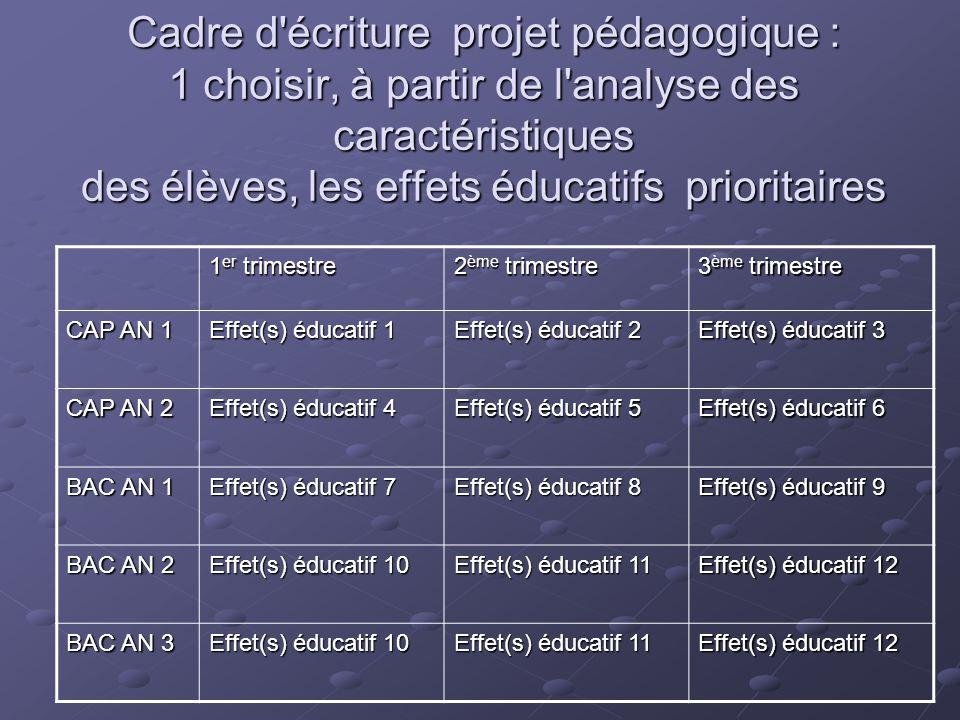 Cadre d écriture projet pédagogique : 1 choisir, à partir de l analyse des caractéristiques des élèves, les effets éducatifs prioritaires