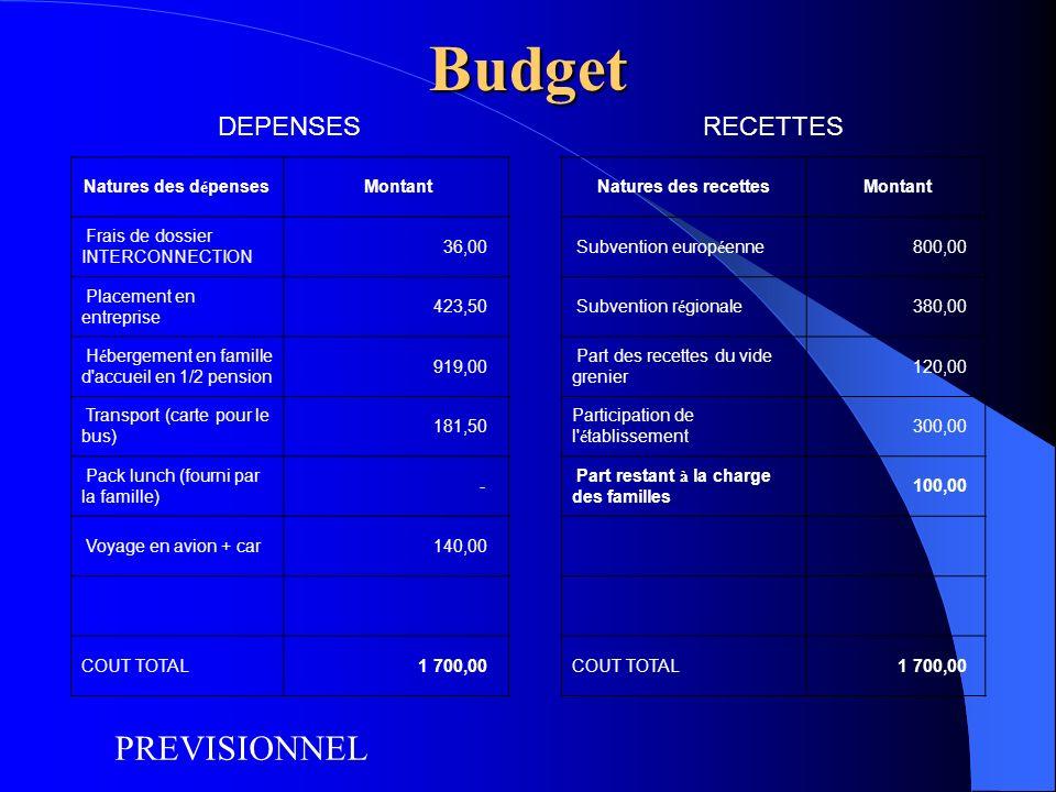 Budget PREVISIONNEL DEPENSES RECETTES Natures des dépenses Montant