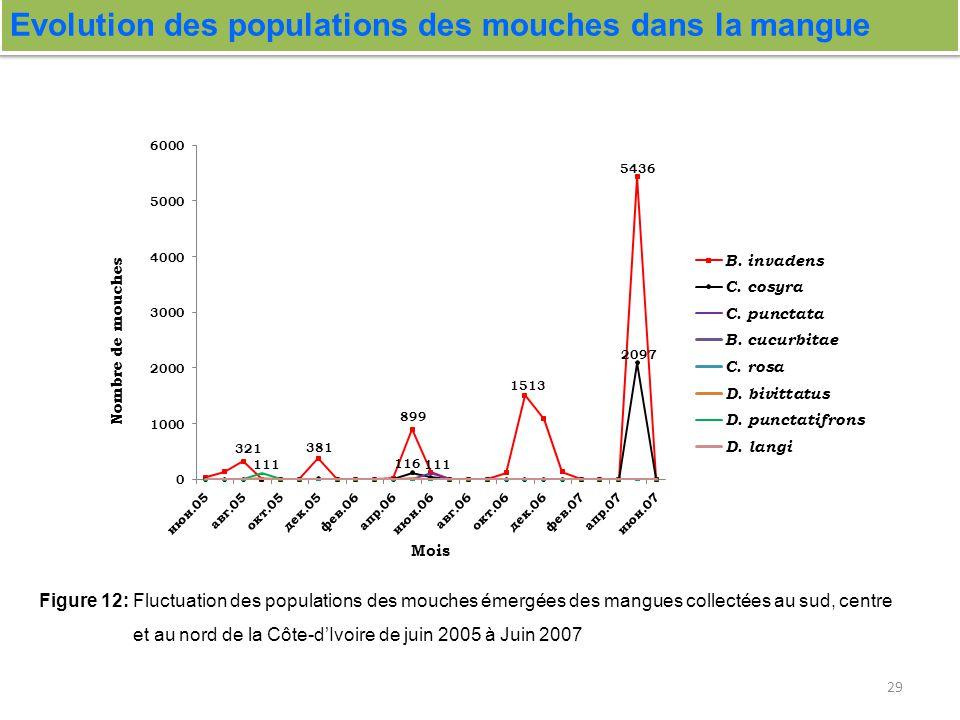 Evolution des populations des mouches dans la mangue