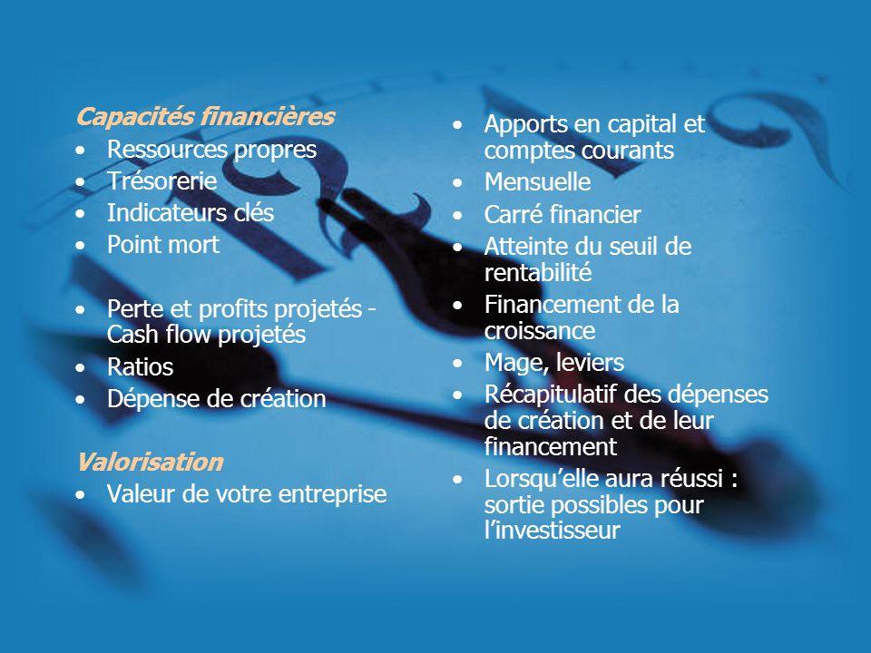 Capacités financières