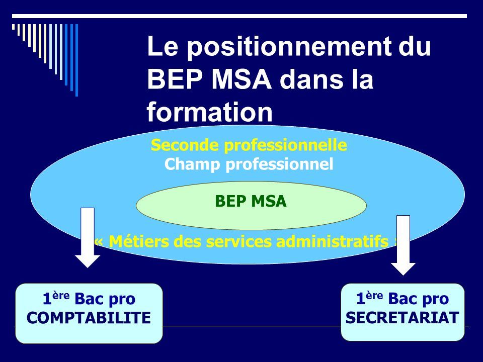 Le positionnement du BEP MSA dans la formation