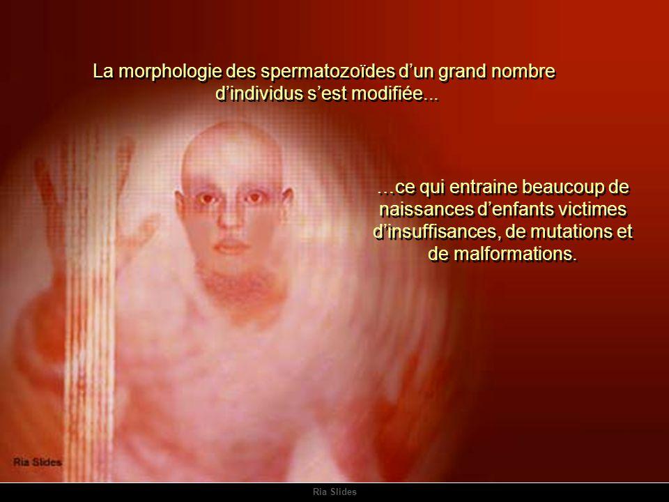 La morphologie des spermatozoïdes d'un grand nombre
