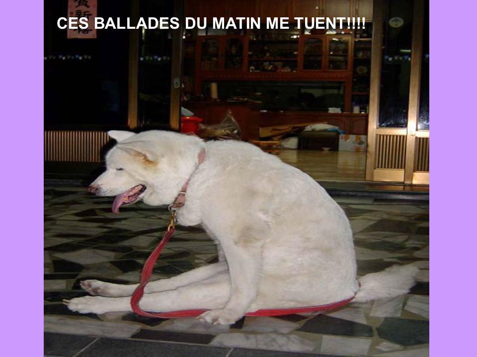 CES BALLADES DU MATIN ME TUENT!!!!