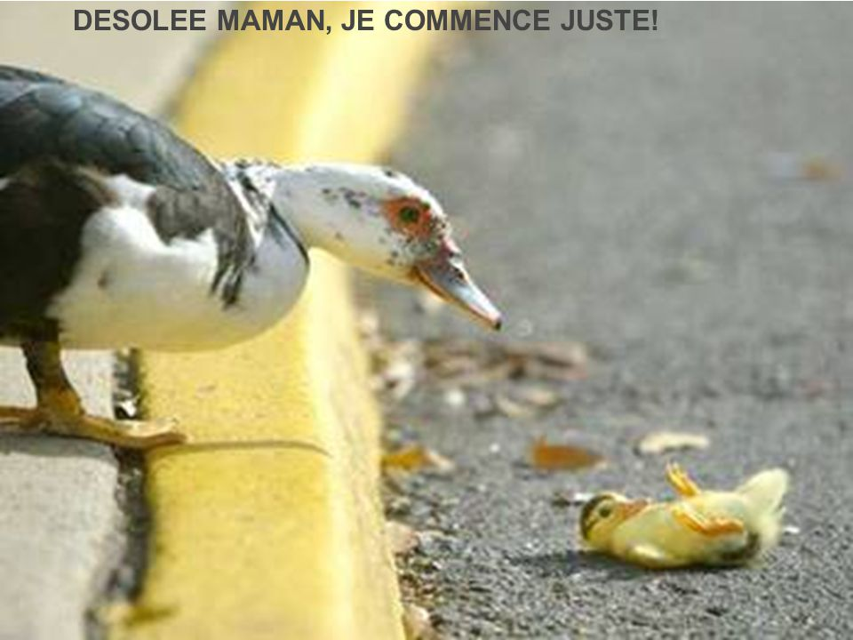 DESOLEE MAMAN, JE COMMENCE JUSTE!