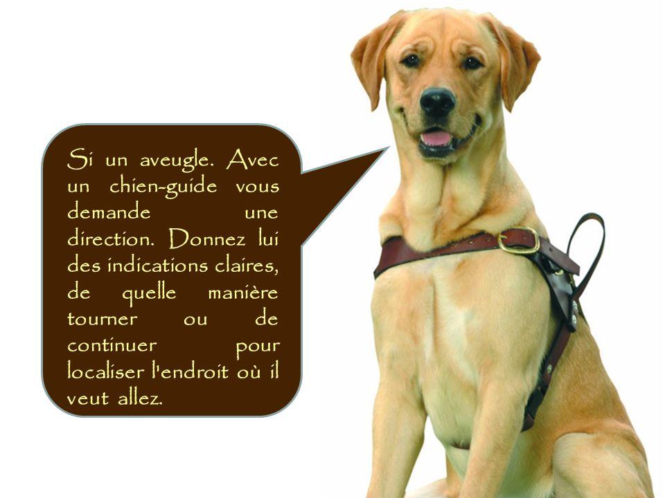 Si un aveugle. Avec un chien-guide vous demande une direction