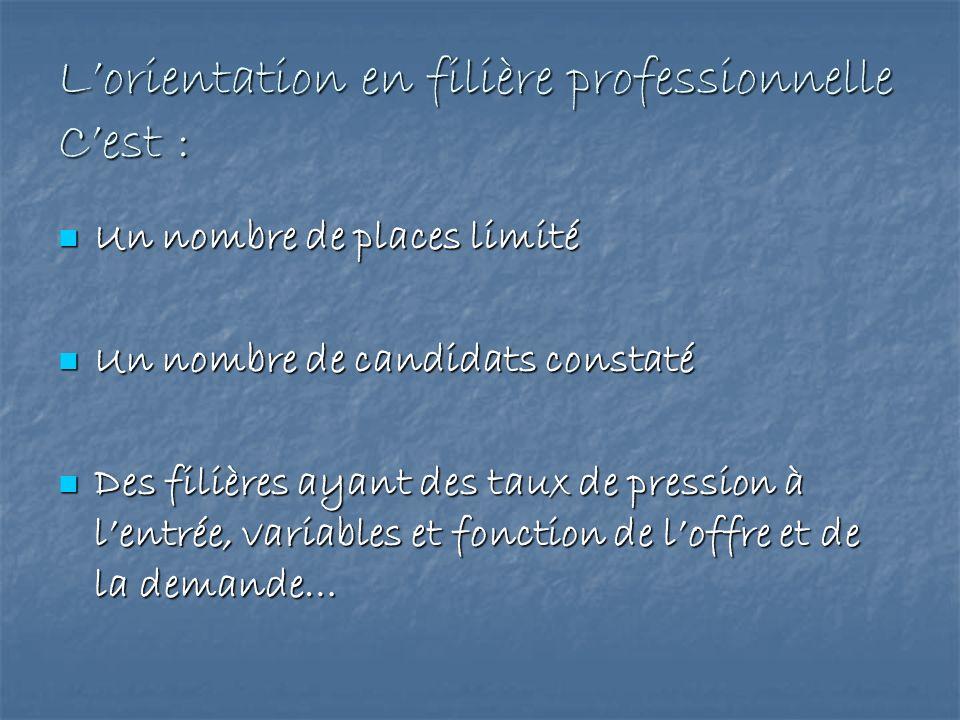 L'orientation en filière professionnelle C'est :