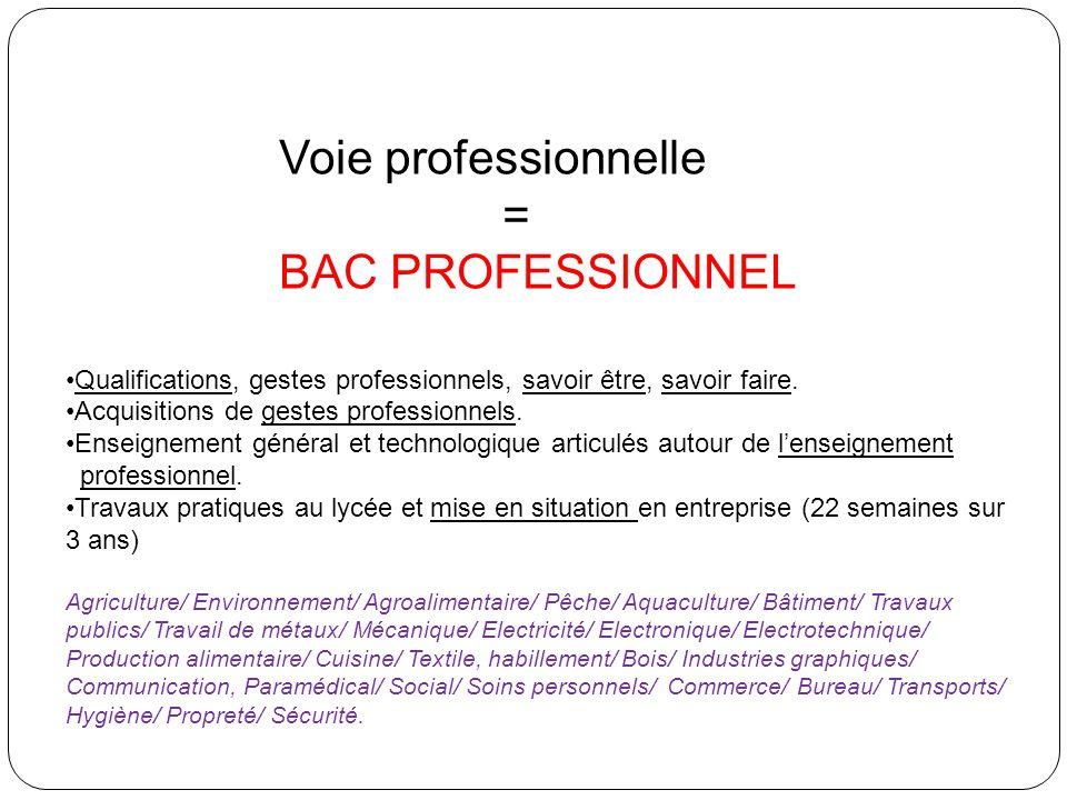 Voie professionnelle = BAC PROFESSIONNEL