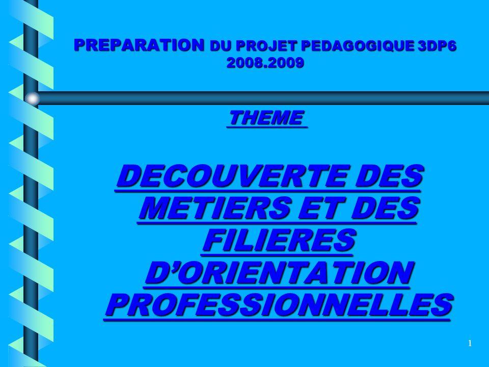 PREPARATION DU PROJET PEDAGOGIQUE 3DP6 2008.2009