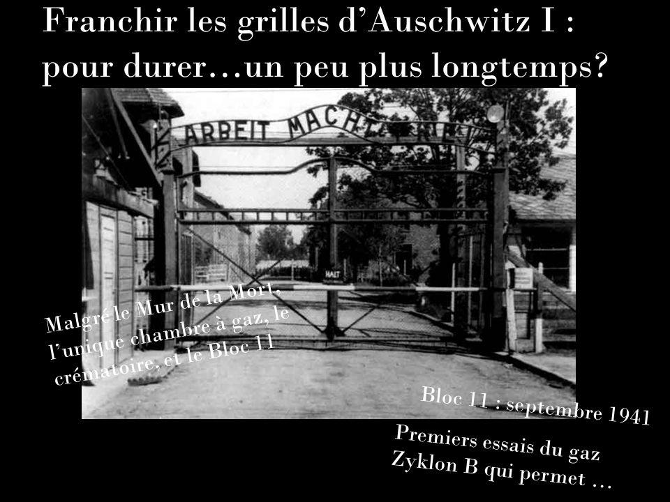 Franchir les grilles d'Auschwitz I : pour durer…un peu plus longtemps