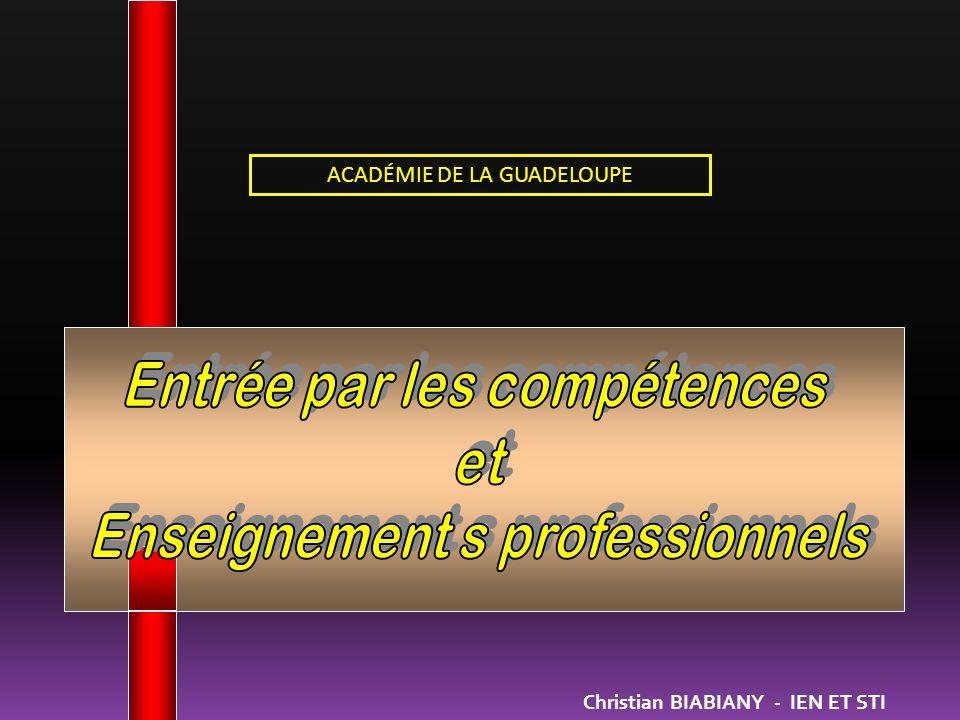 Entrée par les compétences et Enseignement s professionnels