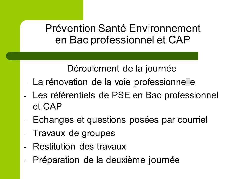 Prévention Santé Environnement en Bac professionnel et CAP