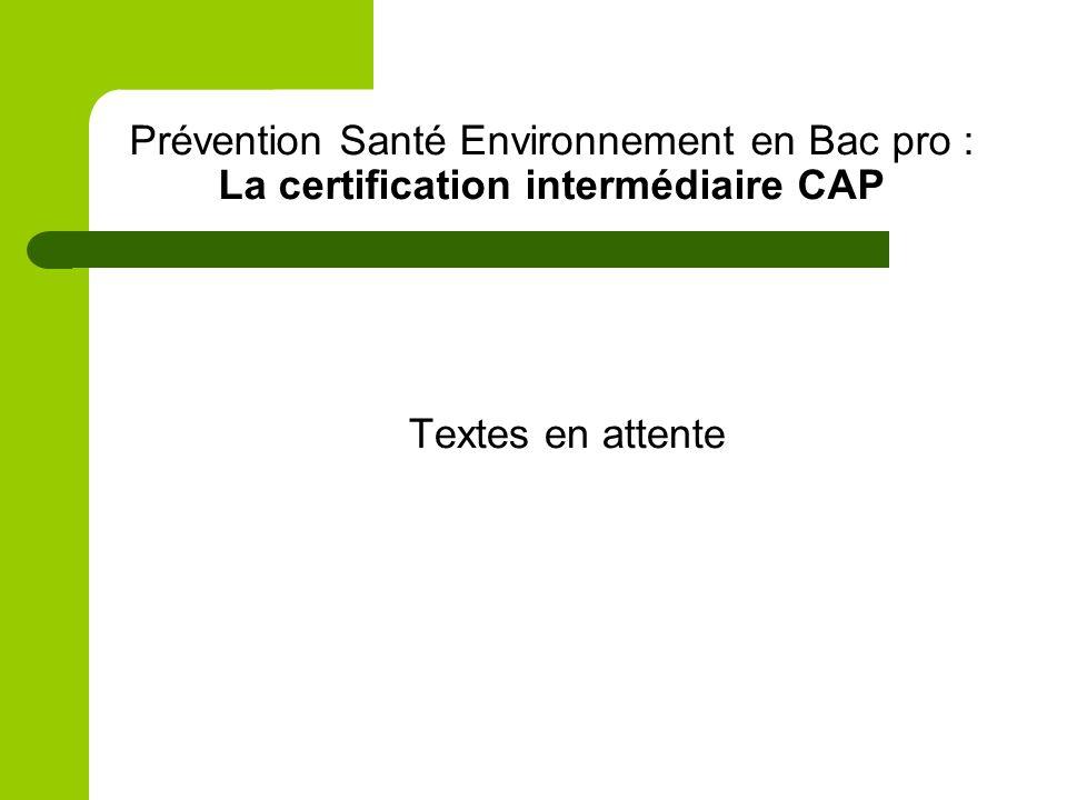 Prévention Santé Environnement en Bac pro : La certification intermédiaire CAP