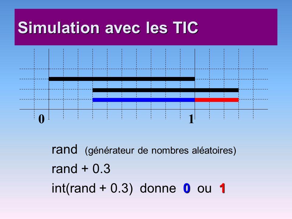 Simulation avec les TIC
