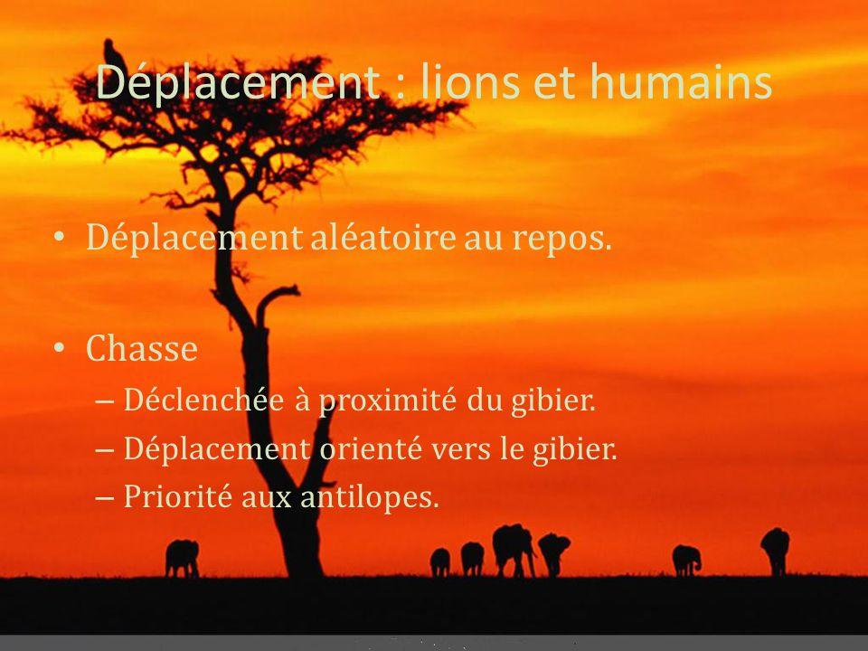 Déplacement : lions et humains