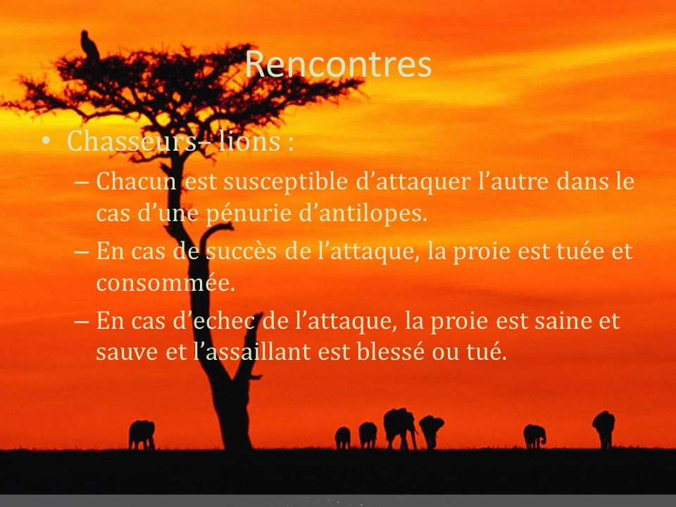 Rencontres Chasseurs– lions :
