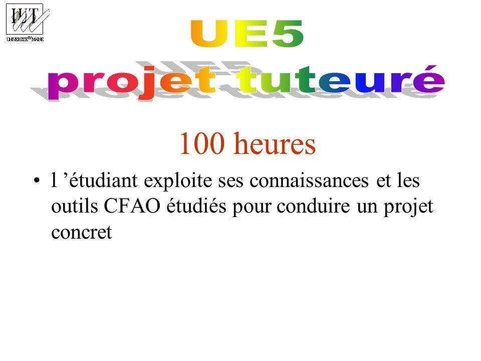 100 heures UE5 projet tuteuré