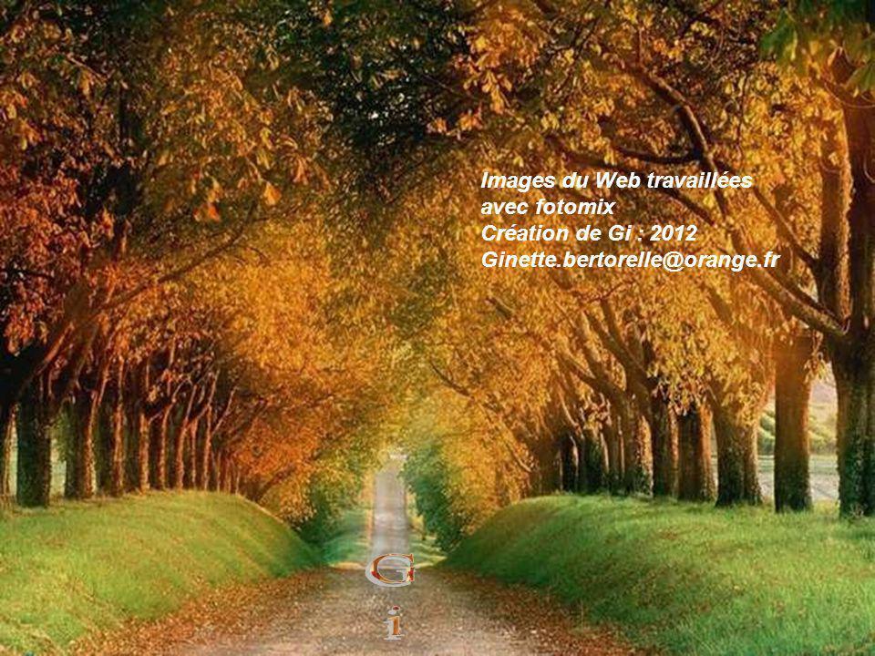 Gi Images du Web travaillées avec fotomix Création de Gi : 2012
