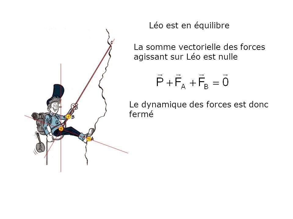 Léo est en équilibreLa somme vectorielle des forces agissant sur Léo est nulle.