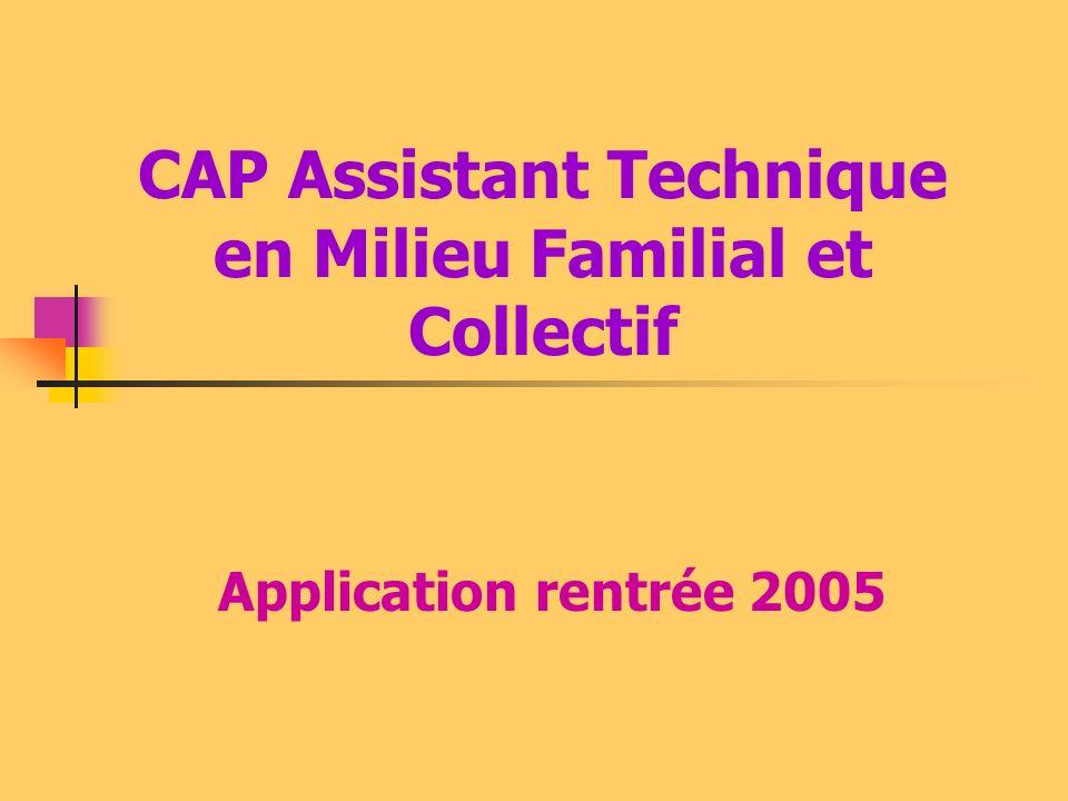 CAP Assistant Technique en Milieu Familial et Collectif