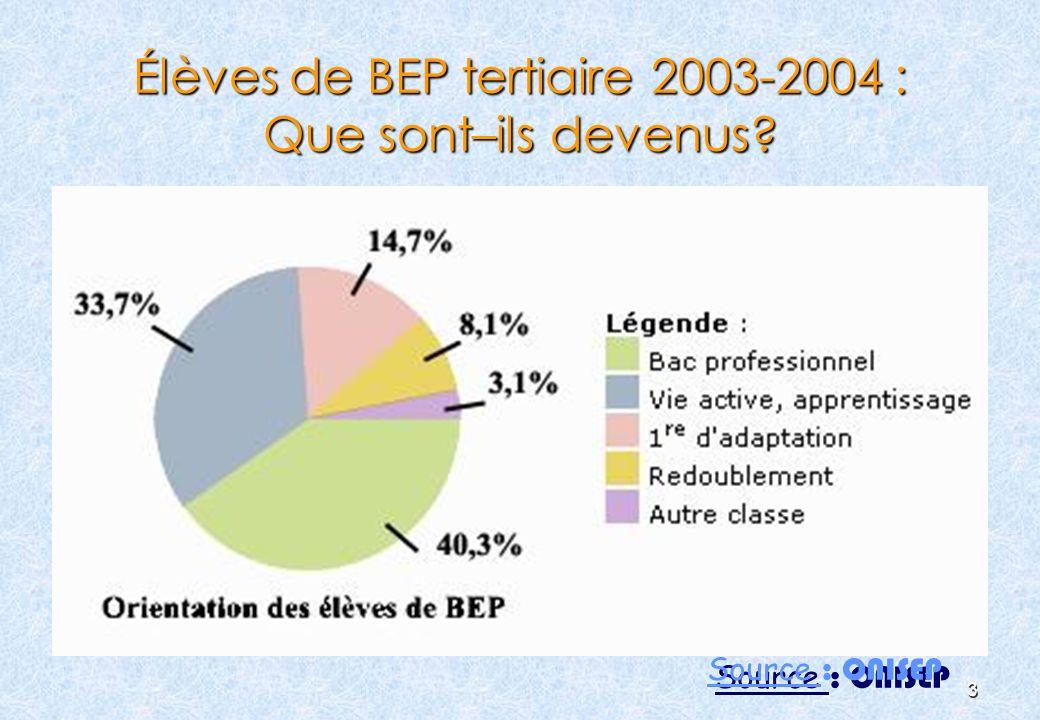 Élèves de BEP tertiaire 2003-2004 : Que sont–ils devenus